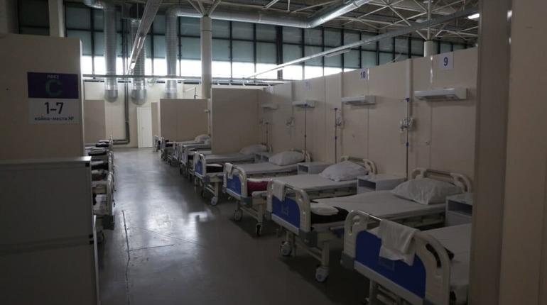 В России снижается смертность от COVID-19, а в Петербурге — нет