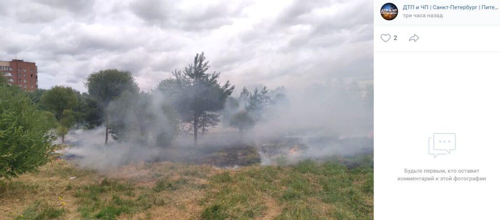 В Полежаевском парке вспыхнул пожар из-за неубранной сухой травы
