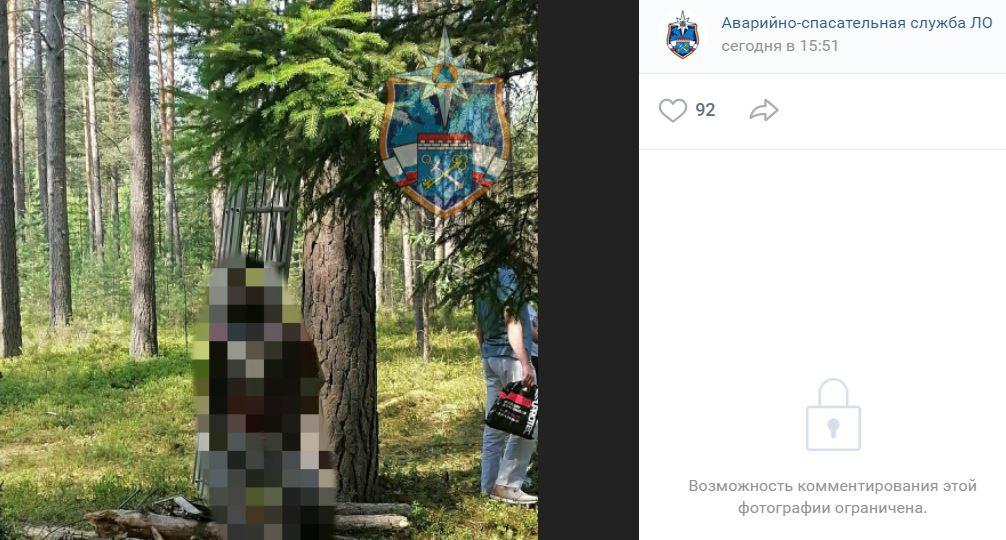 В Приозерском спасатели сняли с дерева тело мертвого мужчины