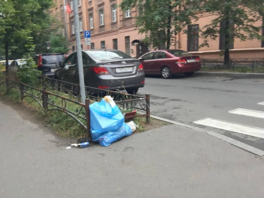 Не успели убрать старую, уже новая: жители Петроградки негодуют из-за новой кучи мусора