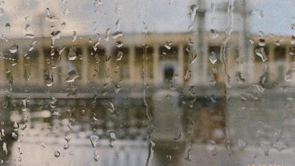 Погода от Леуса: август в Петербурге будет дождливым