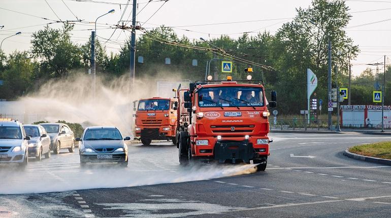 Свыше 6 тысяч кубометров воды ушло на полив зеленых насаждений Петербурга за неделю