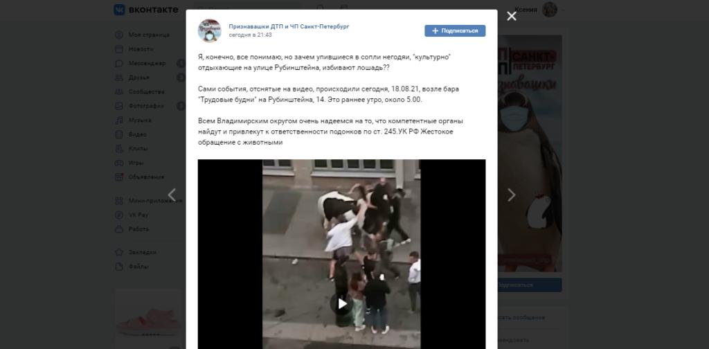 В центре Петербурга пьяная молодежь избила лошадь