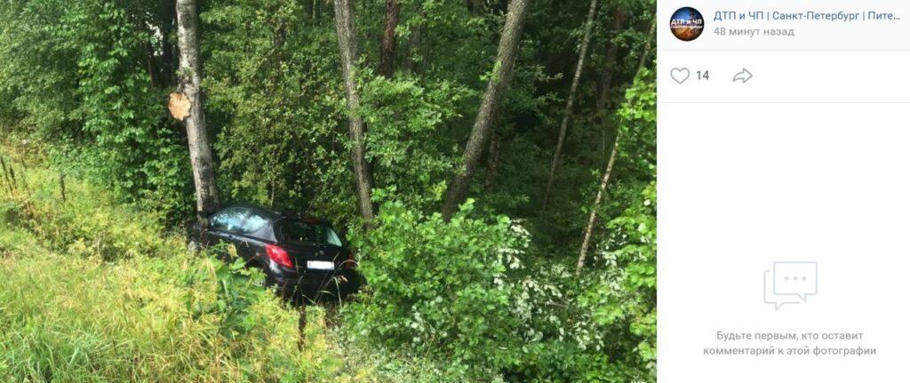 Дети водителя, съехавшего в кювет и врезавшегося в дерево у Соснового Бора, госпитализированы