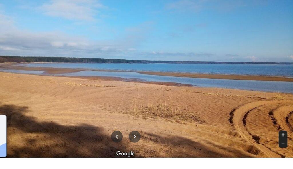 «Приморский УПК» опроверг причастность к работам у Высокинского озера Ленобласти