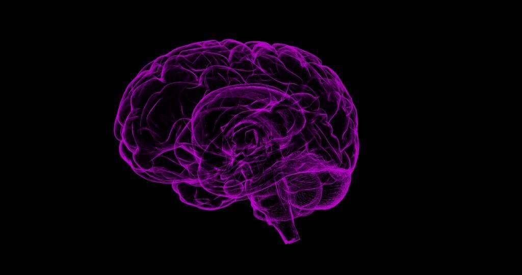 Датские ученые заявили о возможности человеческого мозга предсказывать будущее