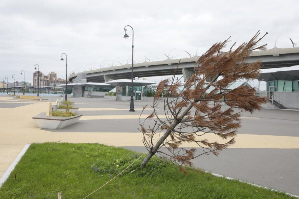 В пятницу Петербург накроют дожди и сильный ветер