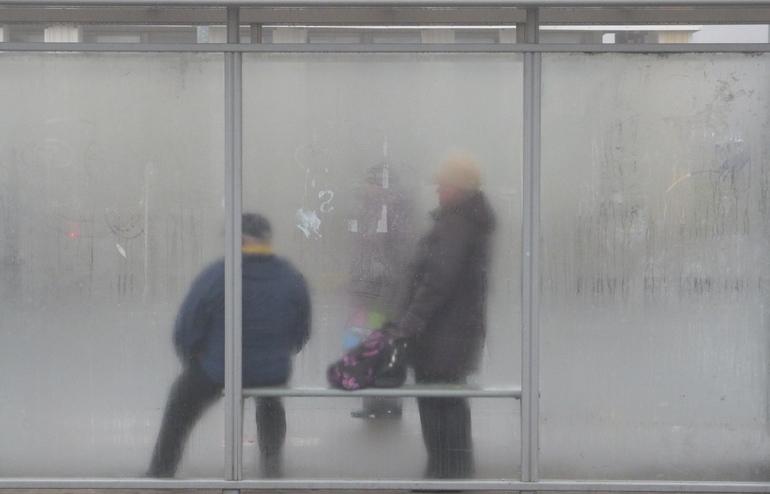 В четверг Ленобласть накроет густой туман
